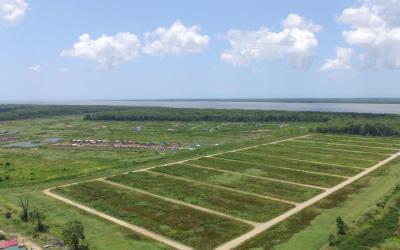 Suri Village IV